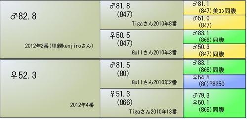 2014YG1番