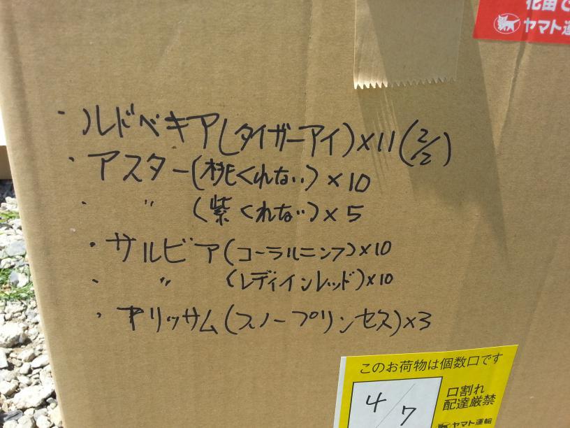 20140804_112148.jpeg