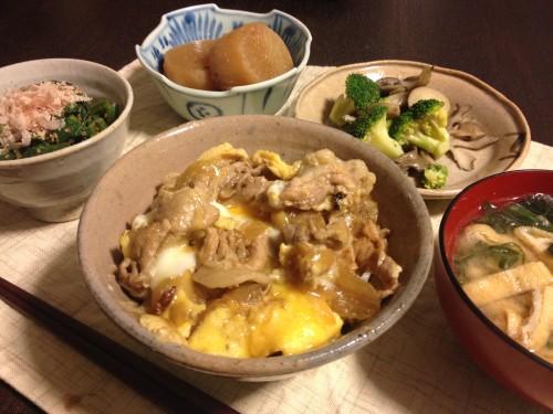Feb13_豚丼