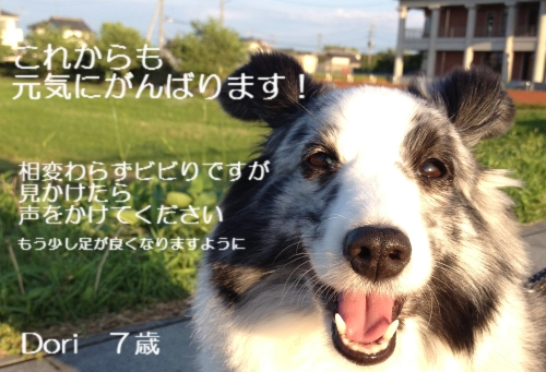 May24_1_20140521232040fca.jpg
