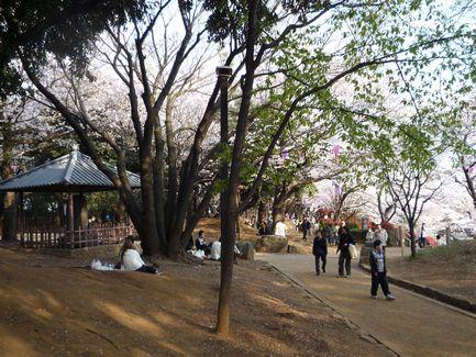 飛鳥山の「桜の賦」