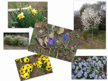 公園は春の色