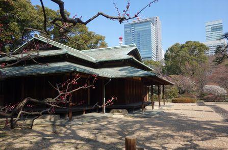二の丸庭園・諏訪の茶屋