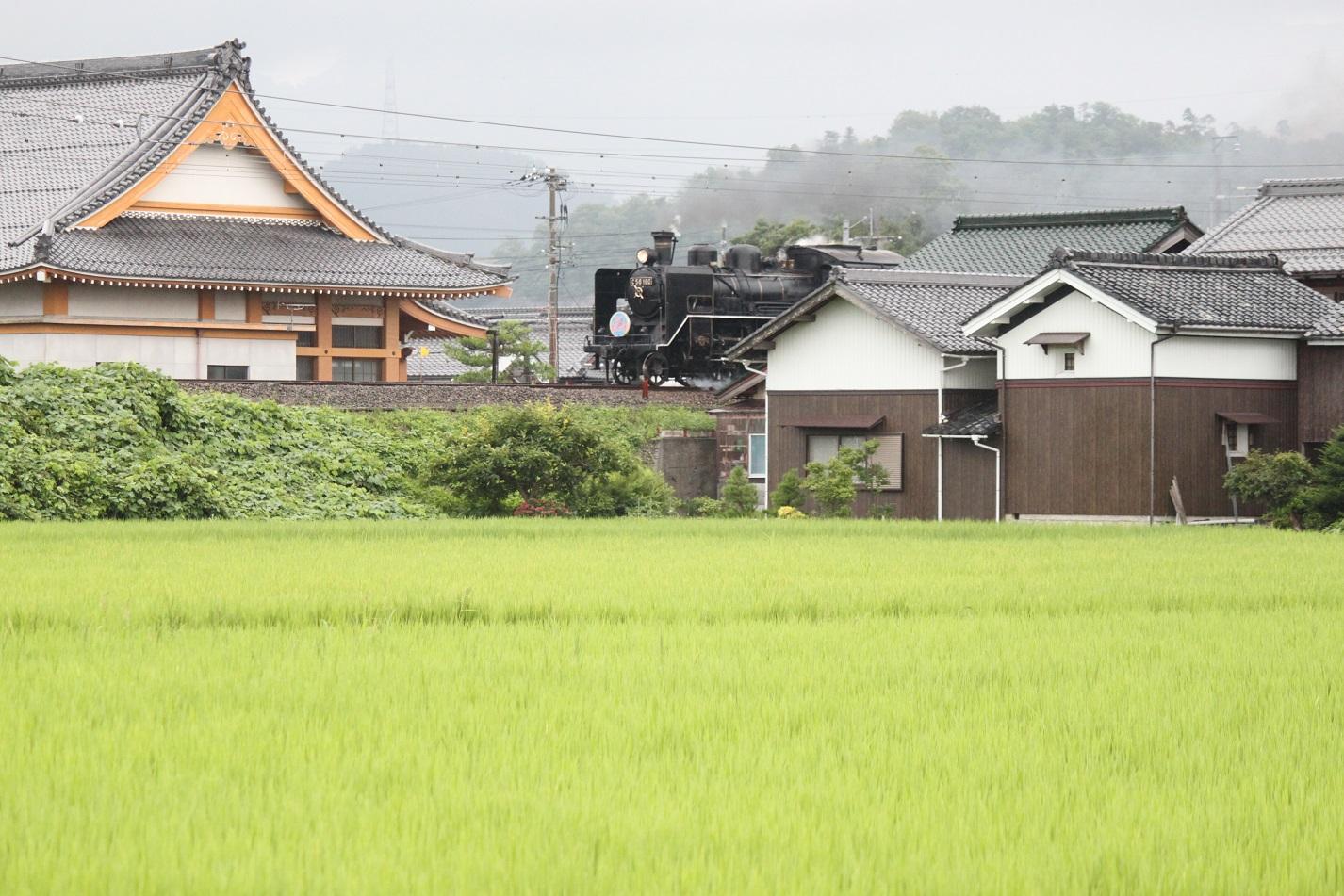 biwako2014summer05.jpg