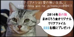 haru2014bana.jpg