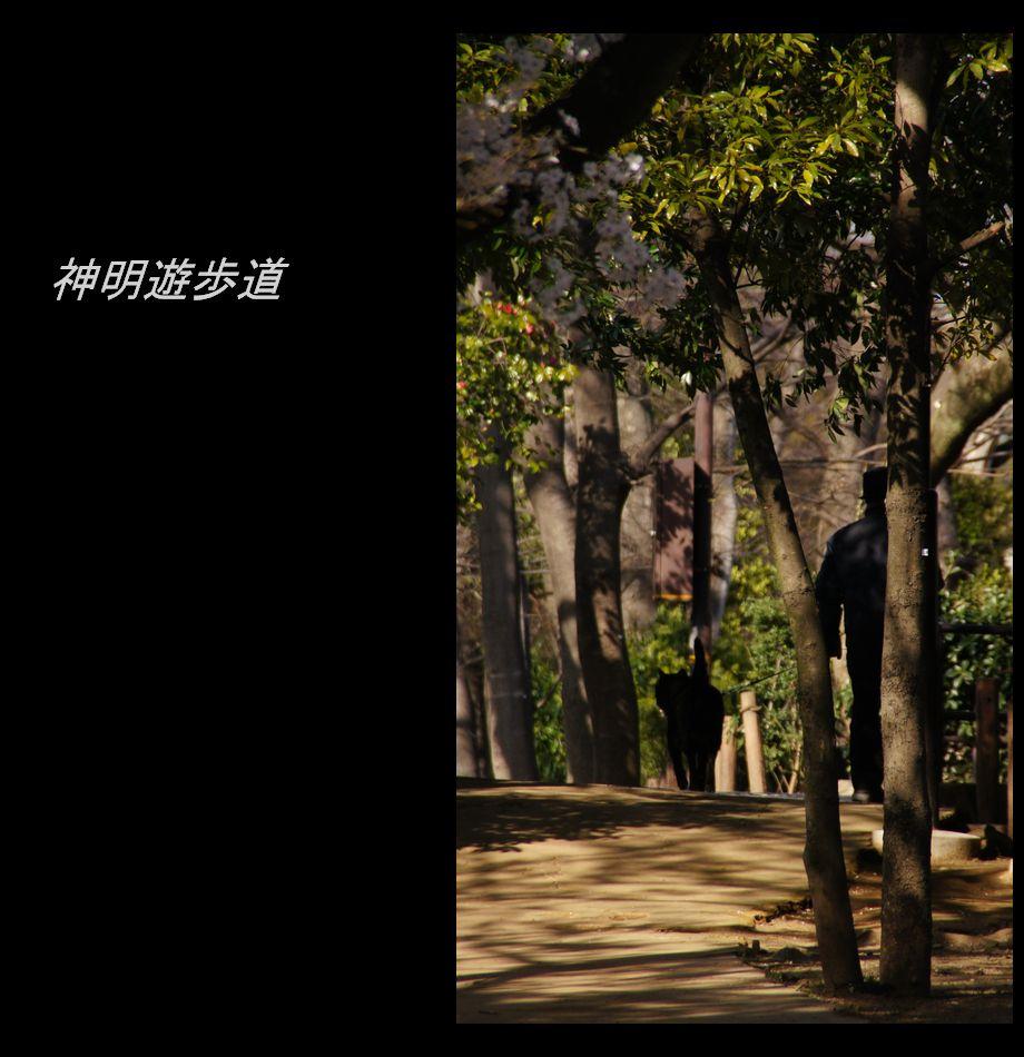 b4DSC08150.jpg
