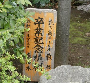 20140530\TAISANBOKU_MASAKO_02JPG