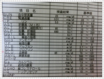 血液検査2014春