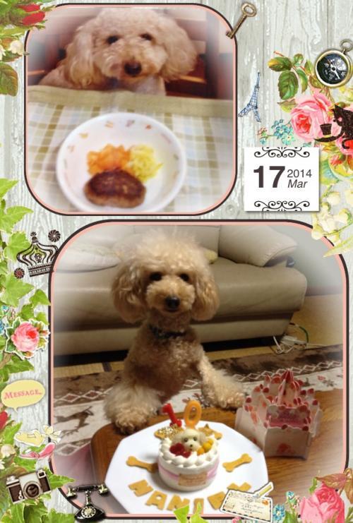 写真+お誕生日3_convert_20140317213535