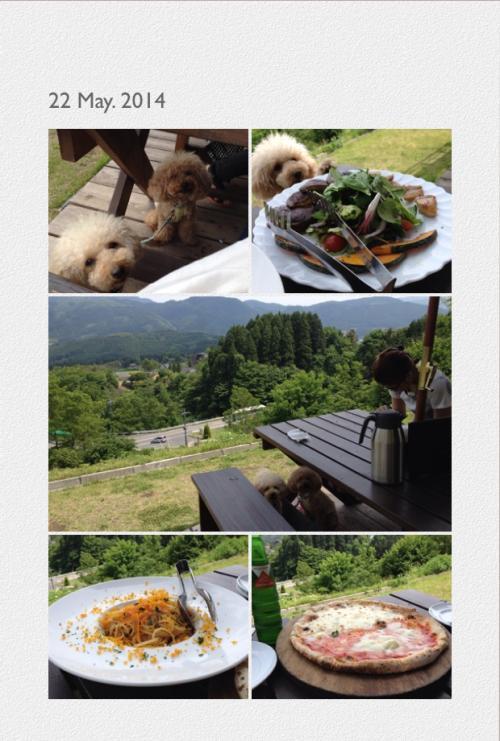 写真+櫟の丘1_convert_20140524215556