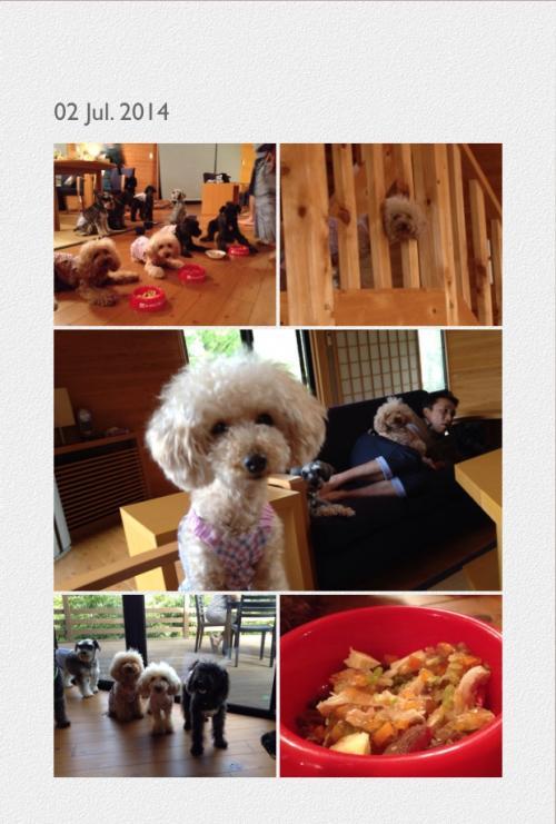 写真別荘+3_convert_20140702204258