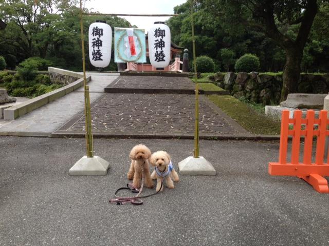写真 お散歩3
