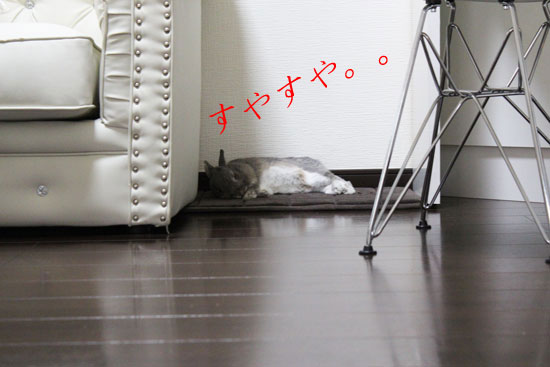 IMG_6322-5.jpg