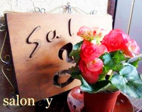 salonY2