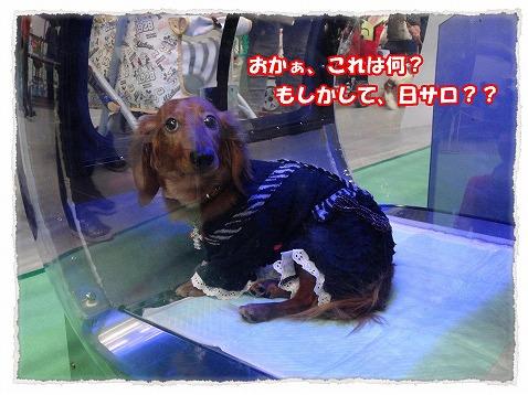 2014_3_10_1.jpg