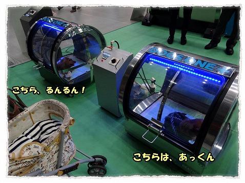 2014_3_10_2.jpg