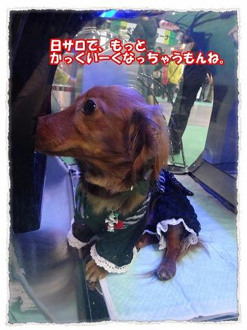 2014_3_10_3.jpg