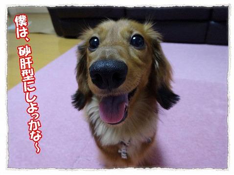 2014_7_10_1.jpg