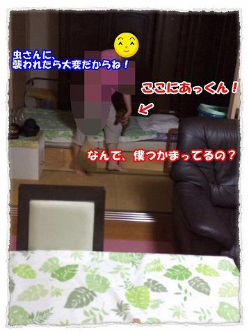 2014_7_14_3.jpg