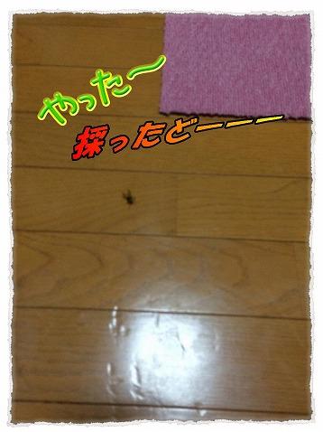 2014_7_14_4.jpg