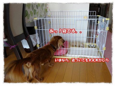 2014_7_18_2.jpg