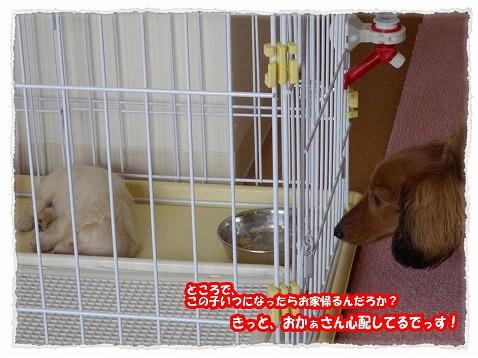 2014_7_18_3.jpg