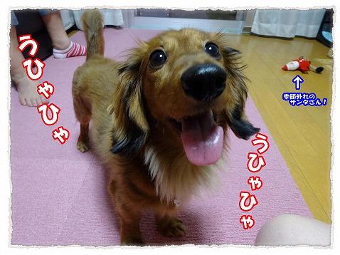 2014_7_24_1.jpg