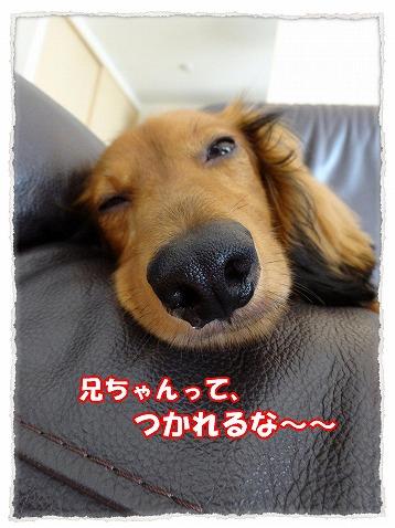 2014_7_31_3.jpg