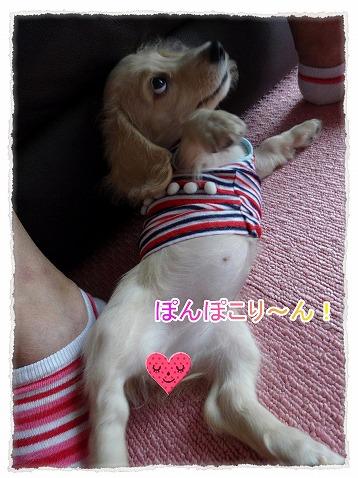 2014_8_21_1.jpg