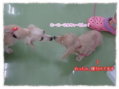 2014_9_4_1.jpg