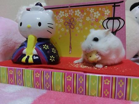 お雛祭り2014-9