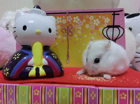 お雛祭り2014-11