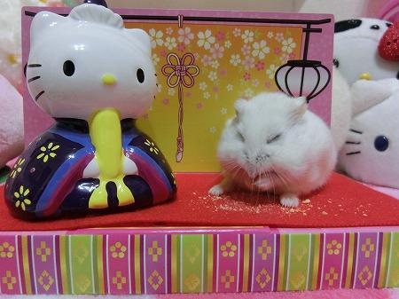 お雛祭り2014-13