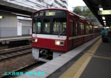 dbbiIMG_3803.jpg