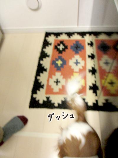 140430_10.jpg