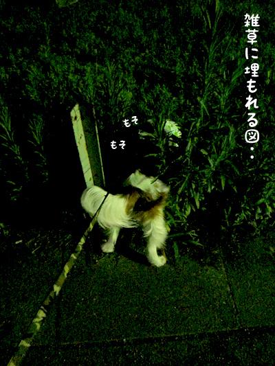 140701_3.jpg