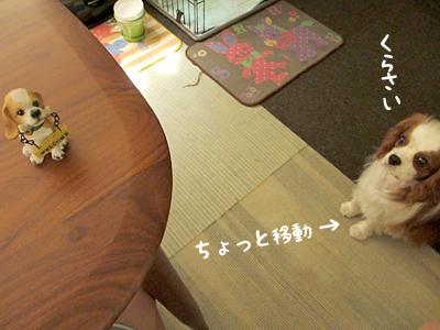 140804_19.jpg