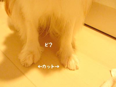 140808_15.jpg