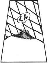 黒猫原作10