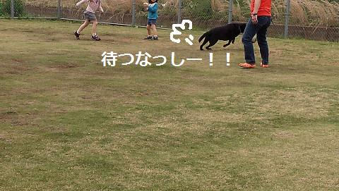 201405019.jpg