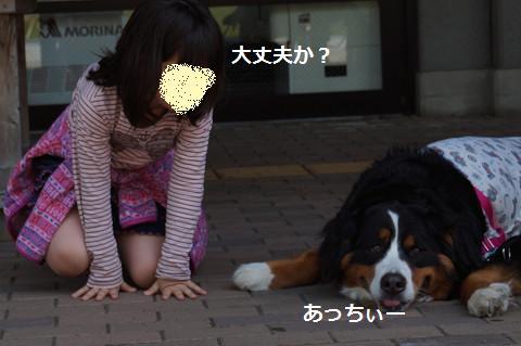 201405073.jpg