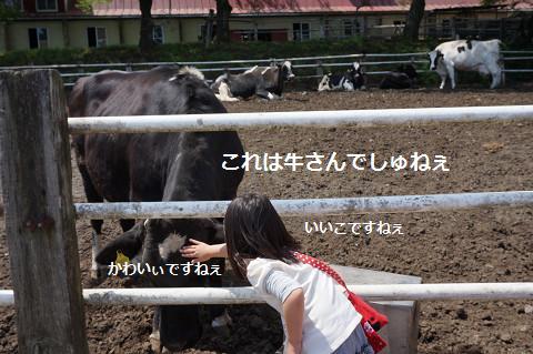 2014050811.jpg