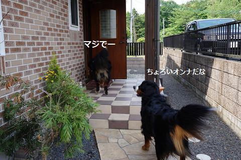 2014052511.jpg