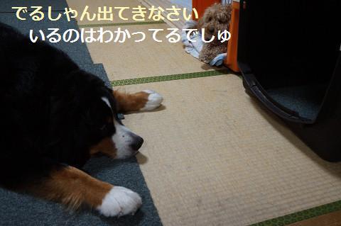 201407186.jpg