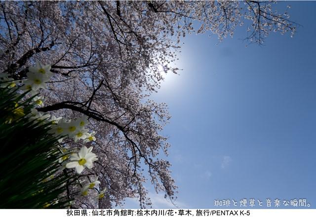 s-2-14_201405112129083b6.jpg