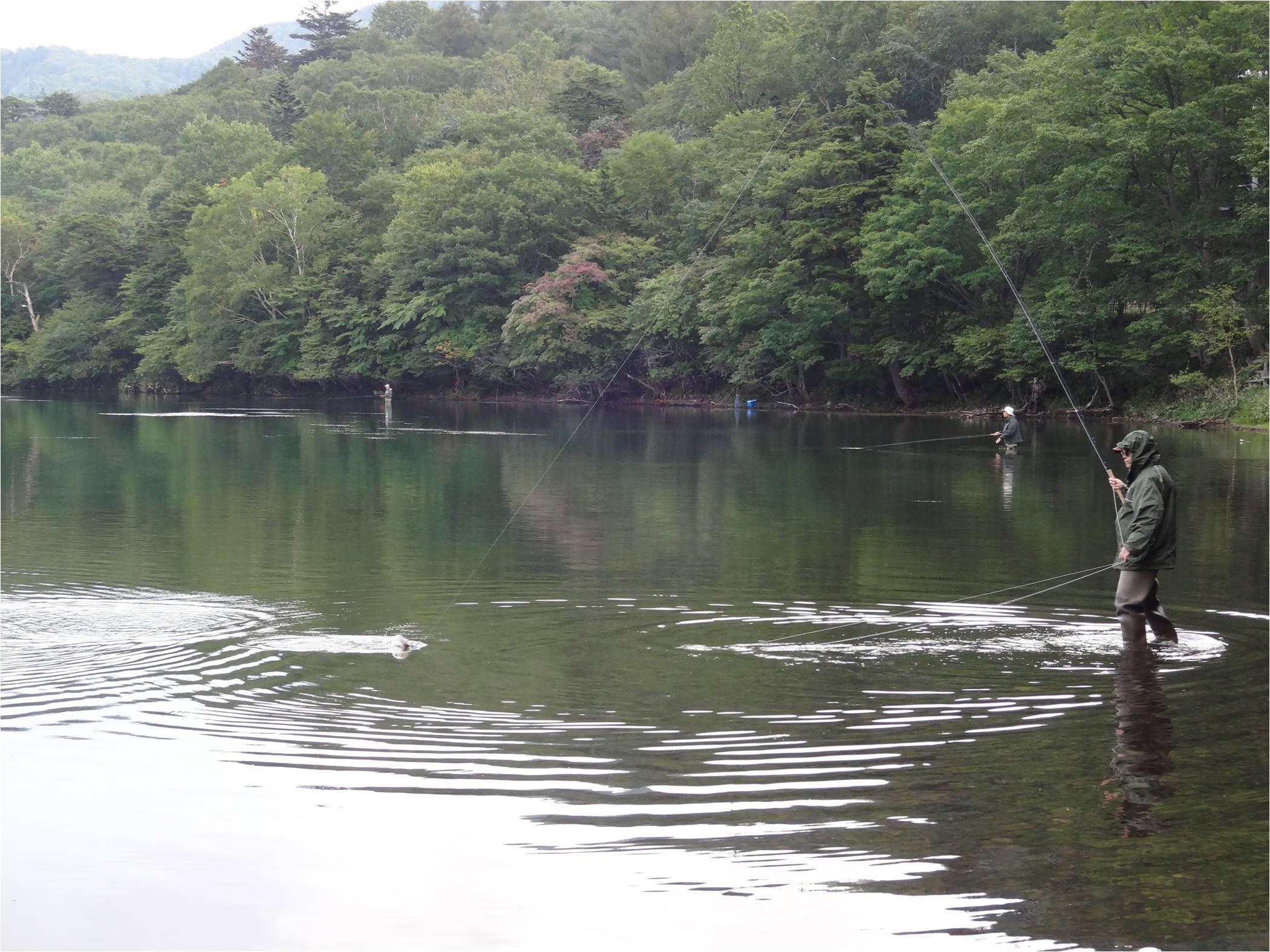 湯ノ湖1-6