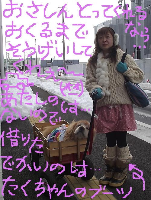 2014年2月ぱれっとさんへ通院行き②