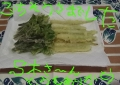 S木さんから頂いた山菜の天ぷら