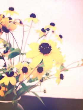 花②_convert_20140913181434
