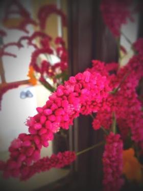花①_convert_20140913181412